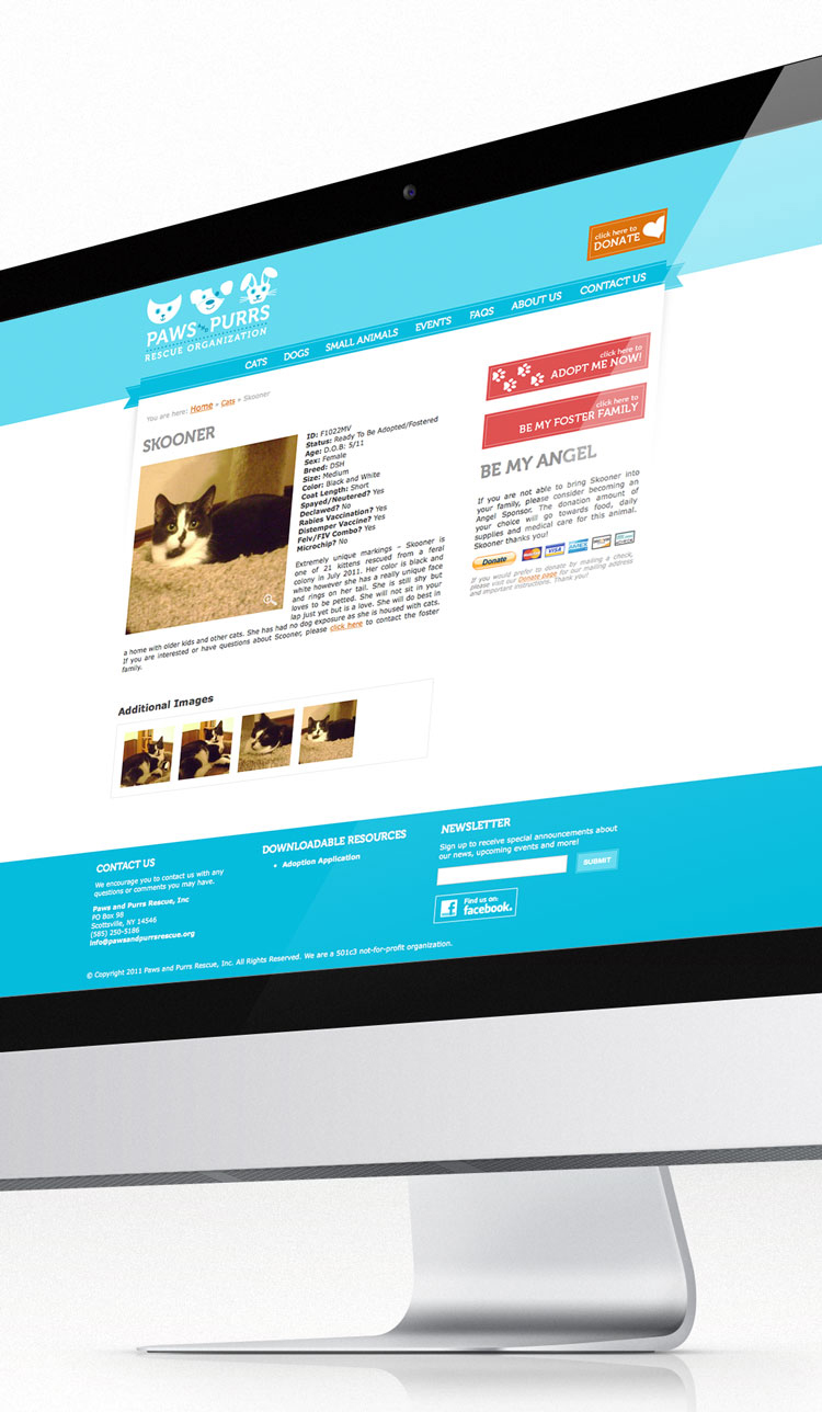 Paws & Purrs Rescue website on desktop